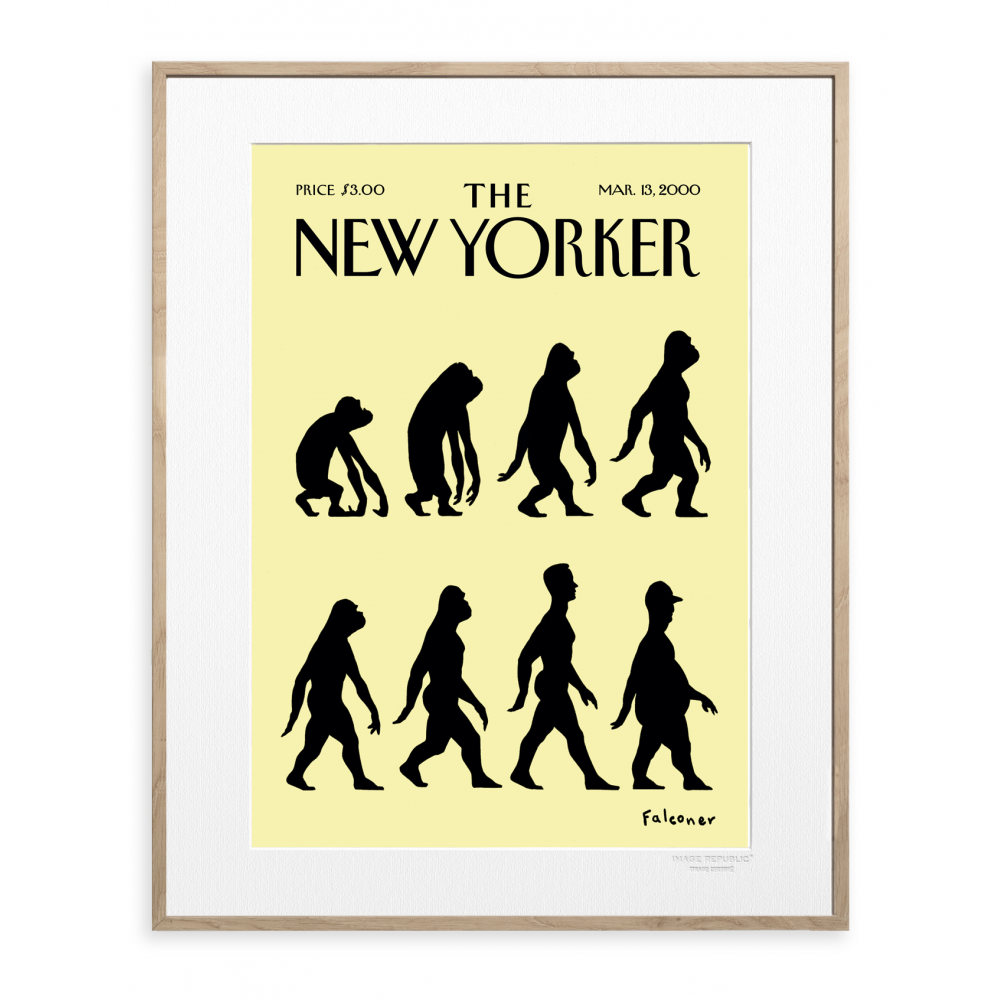 affiche the new yorker 48 falconer evolution. Black Bedroom Furniture Sets. Home Design Ideas