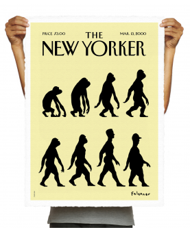 THE NEWYORKER 48 FALCONER EVOLUTION
