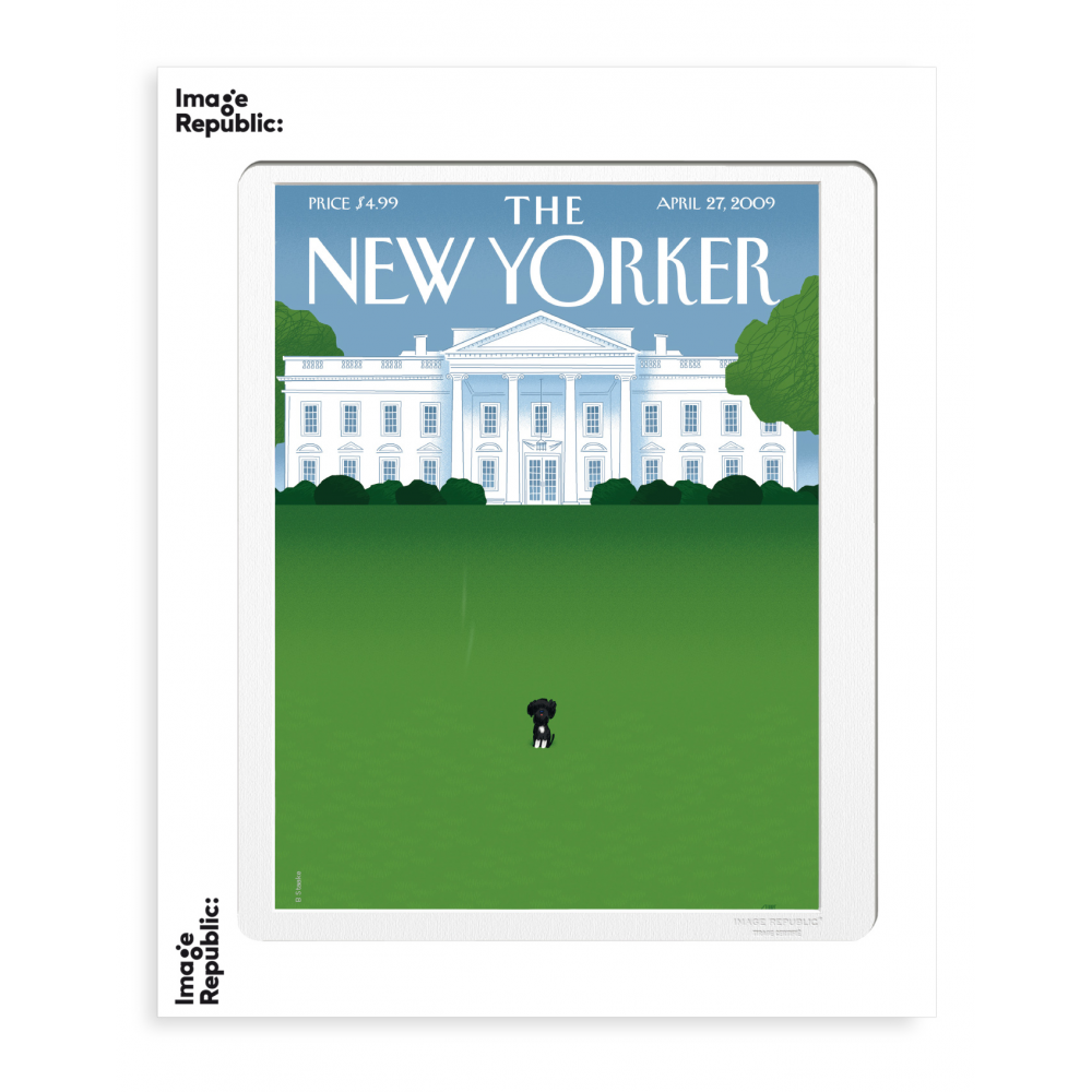 THE NEWYORKER 19 STAAKE